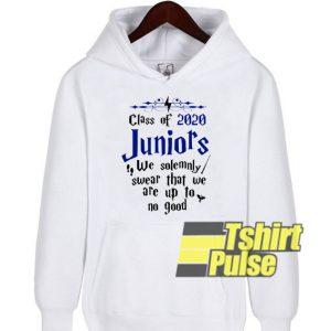 Class of 2020 Juniors hooded sweatshirt clothing unisex hoodie
