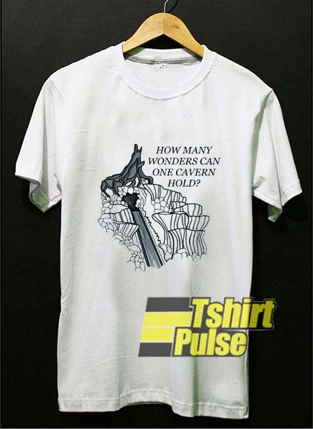 Splash Mountain How Many Wonders t-shirt for men and women tshirt